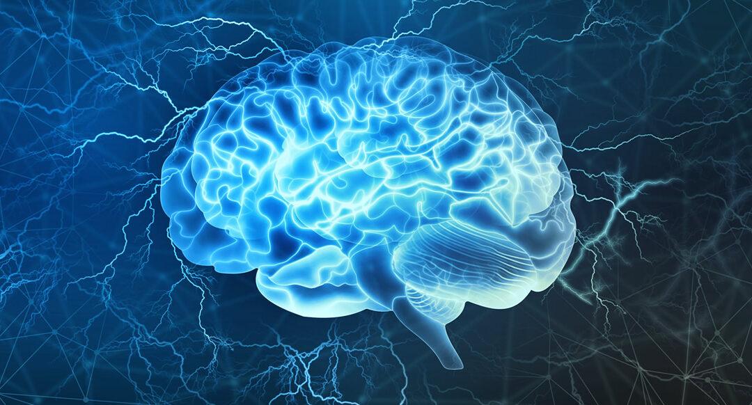 Laingesta de 7 aminoácidos esenciales mejora la función cognitiva, psicológica y social en adultos de mediana edad y mayores