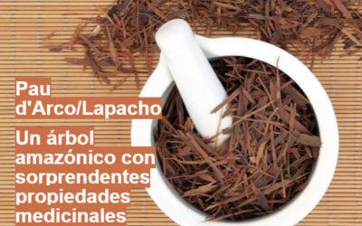 Descubre el secreto de la naturaleza para combatir las infecciones, el Lapacho