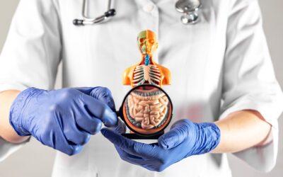 Disbiosis y Permeabilidad Intestinal